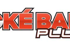 Palma_logo_FINAL